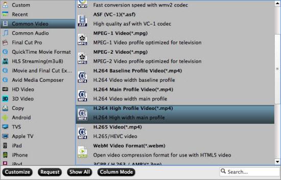 Output H.264 High Profile MP4